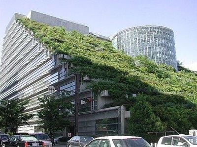 Construccion de edificios verdes en Mexico