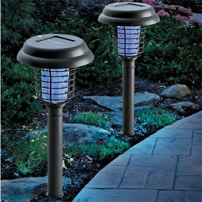 Solar-Lights-for-Your-Garden