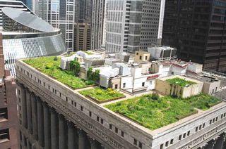 Chicago ocupa primer lugar en edificios verdes