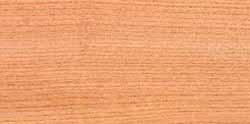 Tipos de maderas Olmo