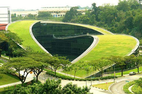 Techos Verdes, para disfrutar de un espacio verde dentro de un entorno urbano