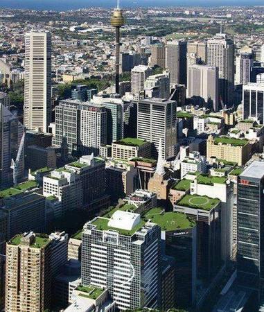 techos verdes en ciudad