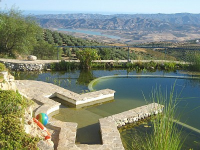 piscina naturales precios