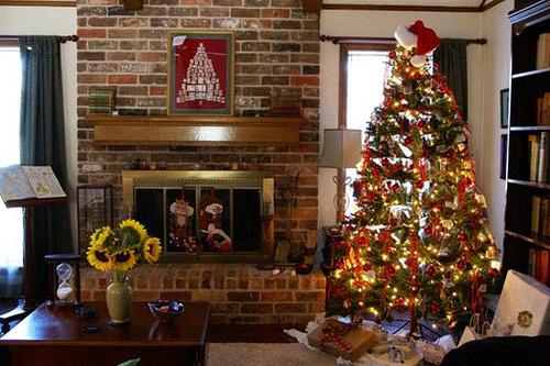 Como elegir el Árbol de Navidad perfecto para su hogar